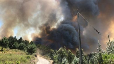 Photo of Brigadas y dos aviones de Conaf combaten incendio forestal en Santa Juana: ha consumido 35 hectáreas